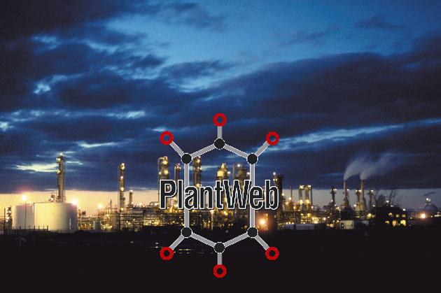plant_web